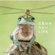 写真絵本 カエルLIFE [単行本]