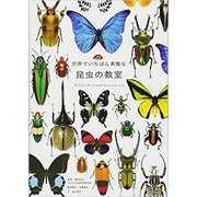 世界でいちばん素敵な昆虫の教室 [単行本]