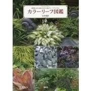 カラーリーフ図鑑―明度と高さの組み合わせで庭をグレードアップする [単行本]