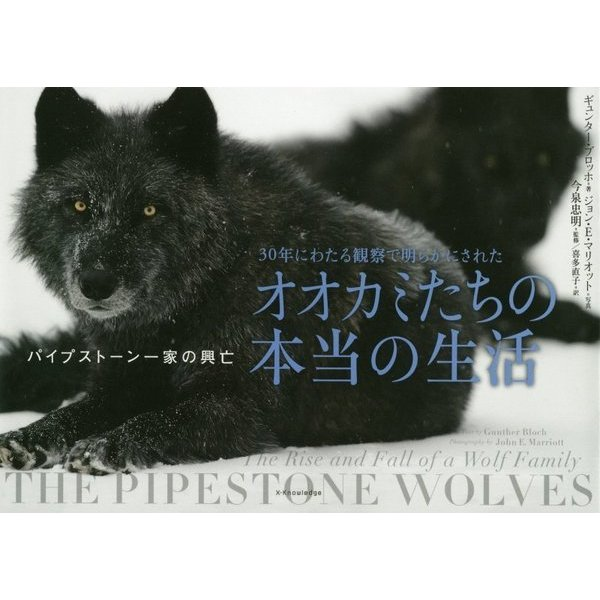 30年にわたる観察で明らかにされたオオカミたちの本当の生活-パイプストーン一家の興亡 [単行本]