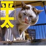 平太-なにわのぶちゃいどる猫 [単行本]