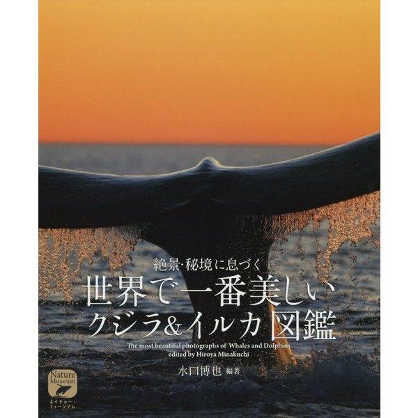 世界で一番美しい クジラ&イルカ図鑑-絶景・秘境に息づく (ネイチャー・ミュージアム) [全集叢書]