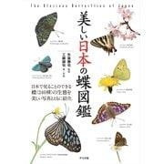 美しい日本の蝶図鑑 [図鑑]
