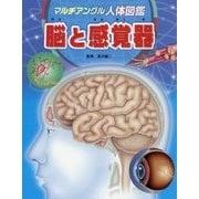 マルチアングル人体図鑑 脳と感覚器 [図鑑]