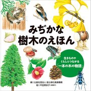 みぢかな樹木のえほん―生きものやくらしとつながる「一本の木の物語」 [単行本]