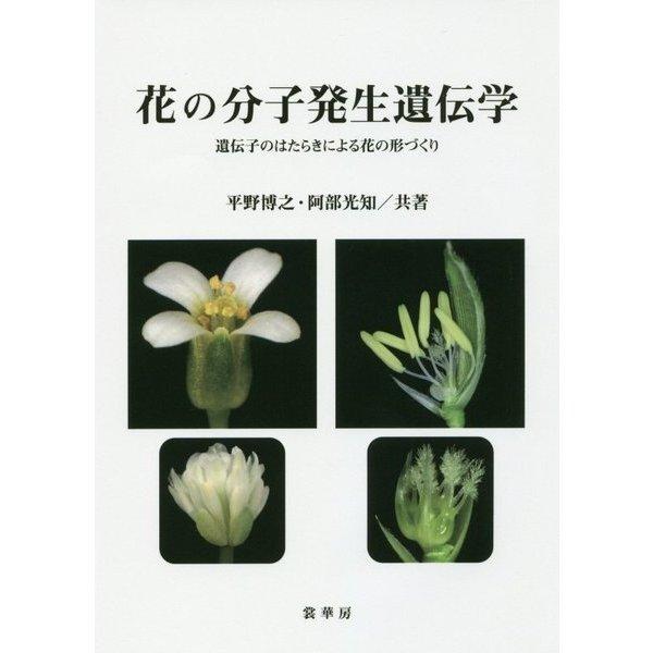 花の分子発生遺伝学―遺伝子のはたらきによる花の形づくり [単行本]