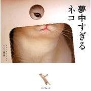 夢中すぎるネコ [単行本]