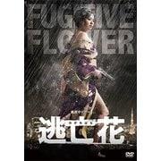 逃亡花 DVD-BOX