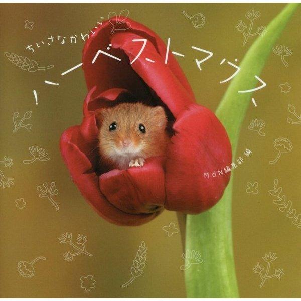 ちいさなかわいいハーベストマウス [単行本]