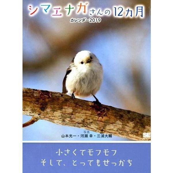 シマエナガさんの12ヵ月カレンダー卓上 2019 [単行本]