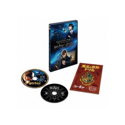 ハリー・ポッターと賢者の石 & ファンタスティック・ビーストと魔法使いの旅 魔法の世界 入学セット [DVD]