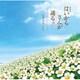 大島ミチル/劇場版 はいからさんが通る 後編~花の東京大ロマン~ オリジナル・サウンドトラック