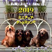 ミニチュア・ダックスフンドカレンダー 2019 [ムックその他]