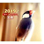文鳥カレンダー 2019 [ムックその他]