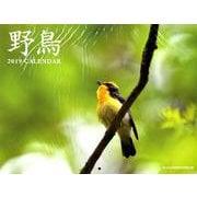 野鳥カレンダー 2019 [ムックその他]