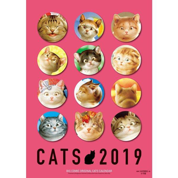 村松誠猫カレンダー 2019 [ムック他]