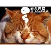 猫カレンダーのら 2019 [単行本]