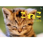 こねこカレンダー 2019 [ムックその他]
