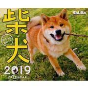 柴犬おはなし週めくりカレンダー 2019 [単行本]