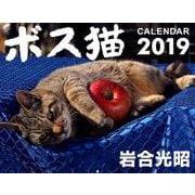 ボス猫カレンダー 2019 [単行本]