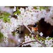 鳥たちと日本の美しい風景カレンダー 2019 [単行本]