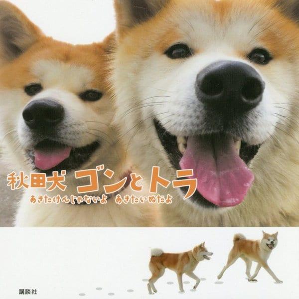 秋田犬ゴンとトラ―あきたけんじゃないよあきたいぬだよ [単行本]