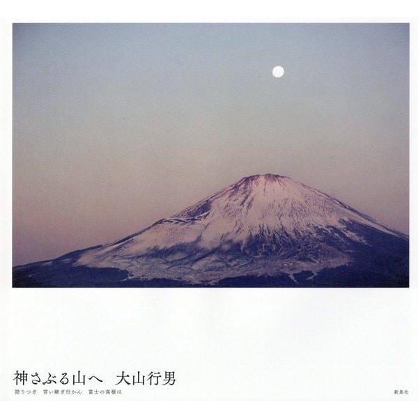 神さぶる山へ―語りつぎ言い継ぎ行かん富士の高嶺は [単行本]