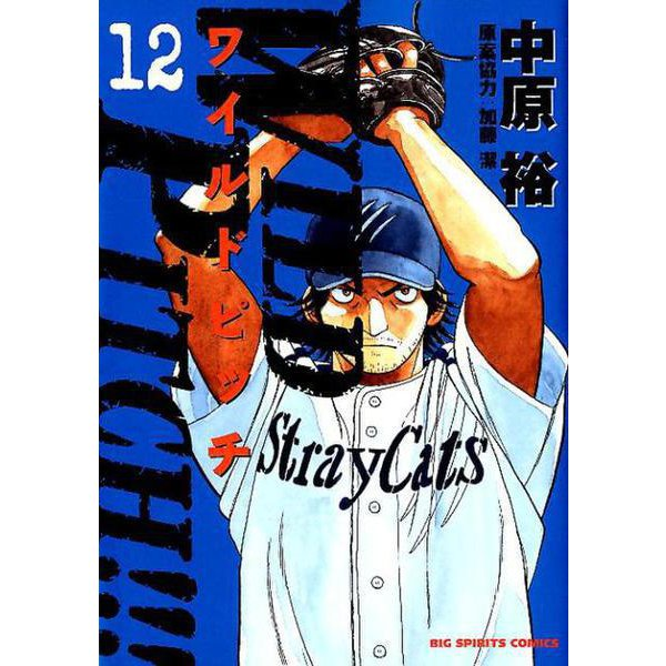 WILD PITCH!!!<12>(ビッグ コミックス) [コミック]
