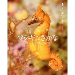 フシギなさかな-ヒメタツのひみつ [絵本]