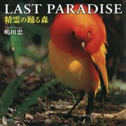 LAST PARADISE 精霊の踊る森 [単行本]