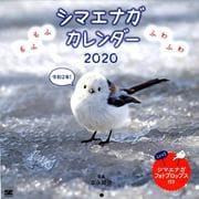 もふもふふわふわ シマエナガ カレンダー 2020(翔泳社カレンダー) [単行本]