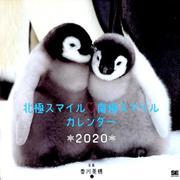 北極スマイル・南極スマイル カレンダー 2020(翔泳社カレンダー) [単行本]