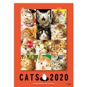 村松誠猫カレンダー 2020 [ムックその他]