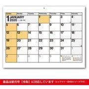 C113 NOLTYカレンダー壁掛け9 [2020年1月始まり]