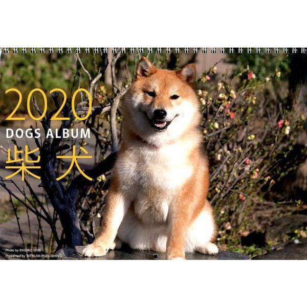 ドッグズアルバム柴犬カレンダー 2020 [単行本]