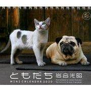 岩合光昭ともだちミニカレンダー 2020 [単行本]