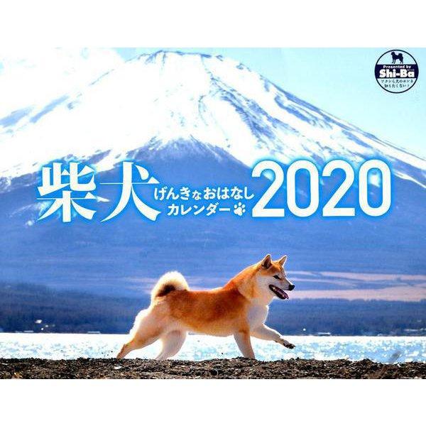 柴犬げんきなおはなしカレンダー 2020 [単行本]