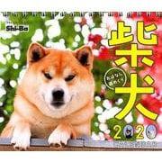 柴犬おはなし週めくりカレンダー 2020 [単行本]