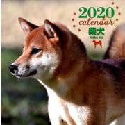 2020年 大判カレンダー 柴犬(カレンダー) [ムックその他]