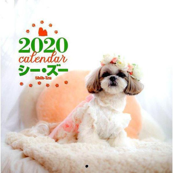 2020年 大判カレンダー シー・ズー(カレンダー) [ムックその他]