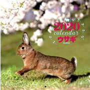 2020年 大判カレンダー ウサギ(カレンダー) [ムックその他]