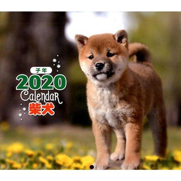 2020年 ミニ判カレンダー 柴犬(カレンダー) [ムックその他]