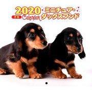 2020年 ミニ判カレンダー ミニチュア・ダックスフンド(カレンダー) [ムックその他]