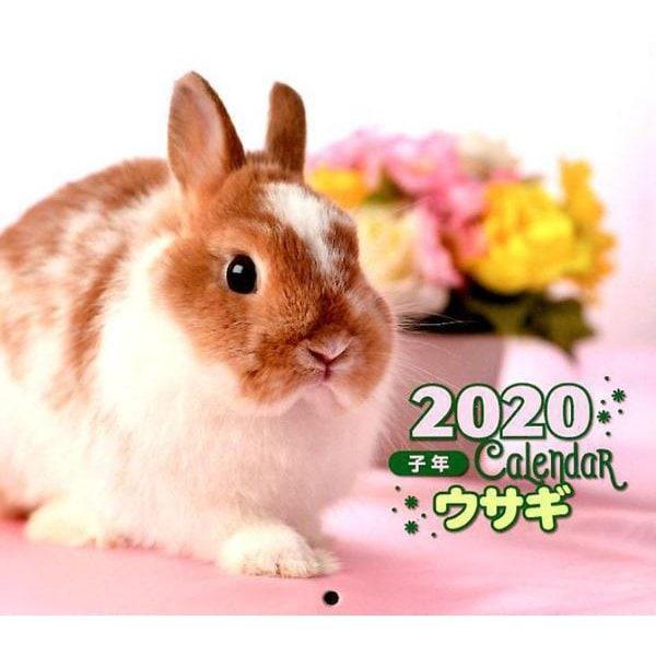 2020年 ミニ判カレンダー ウサギ(カレンダー) [ムックその他]