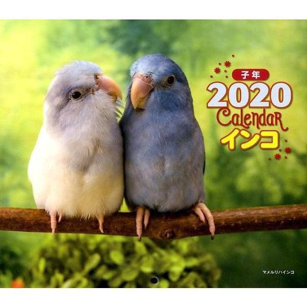 2020年 ミニ判カレンダー インコ(カレンダー) [ムックその他]