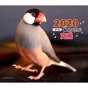 2020年 ミニ判カレンダー 文鳥(カレンダー) [ムックその他]