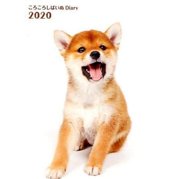 ころころしばいぬ Diary 2020 [ムックその他]