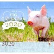 Lucky PIG CALENDAR 2020 [単行本]