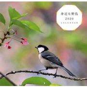 身近な野鳥CALENDAR 2020 [単行本]