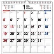 書き込み式シンプルカレンダーA3変型 2020年 [単行本]
